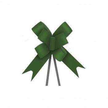 Laço Maxi FM 100L 16mmx34cm 10pc Verde Escuro