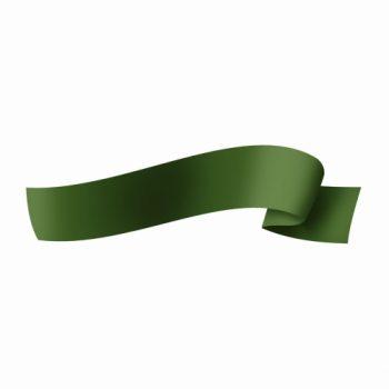 Fita Maxi Lisa 32mmx100m Verde Escuro