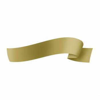 Fita Maxi Liso 32mmx100m Ouro